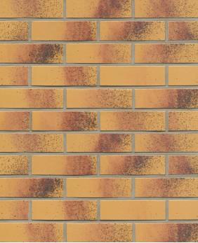Клинкерная плитка «Classic amari (R209NF9 - 9 mm)»