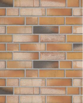 Клинкерная плитка «Kontur WS 492 - Orange bunt»